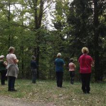 Qi Gong in het bos
